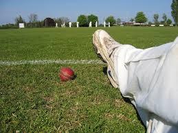 Cricket Ball Boundary