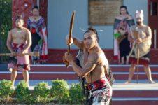 Year of Indigenous Languages: Maori and Polish